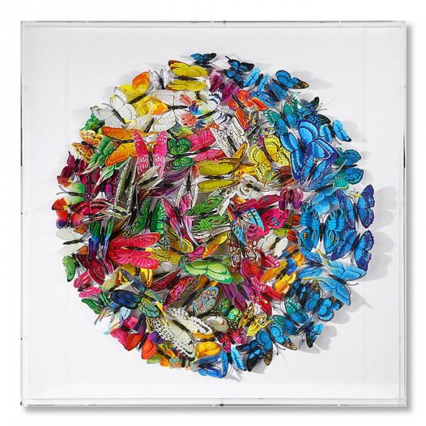 Wandbild Glas in Acrylbox Bild Schmetterlinge 60cm Casablanca Box Butterfly